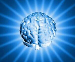 Brain power 3